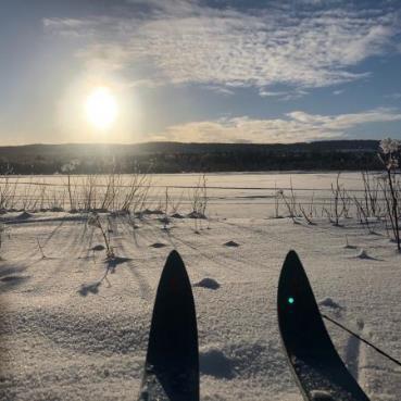 Swedish skis.png